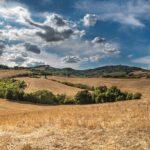 Finanziamenti Regione Toscana a Fondo Perduto